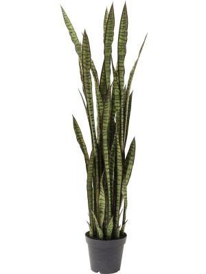 Kare Design Kunststof Plant Sanseveria Hoogte 155 cm
