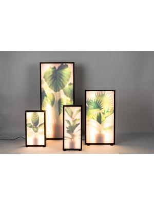 Zuiver Grow XXL Vloerlamp - Roomdivider - 54x8x112 - LED - Elephant Ear Plant